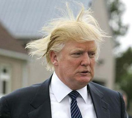 donald trump hair blowing in the wind. Donald+trump+hair+diagram