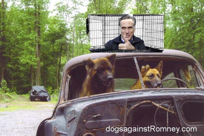 mention heartlessness abusive actions poor dog forget romneycare parallel obamacare