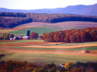 Farm by Scott Bauer via Wikimedia Commons