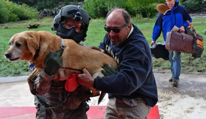 Rescuing a Dog from Flood 9-16-13
