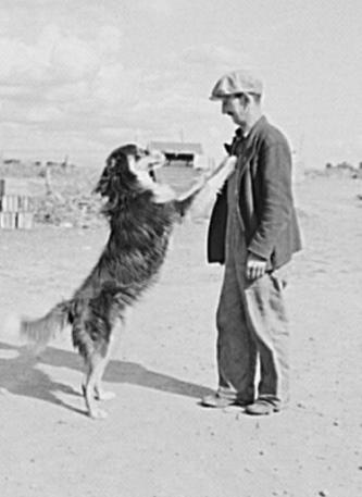 Farmers and Dogs via Modern Farmer