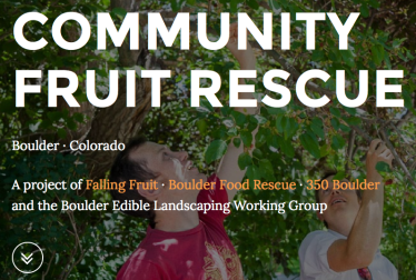 Fruit rescue.org